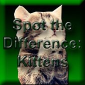 Spot the Difference: Kittens