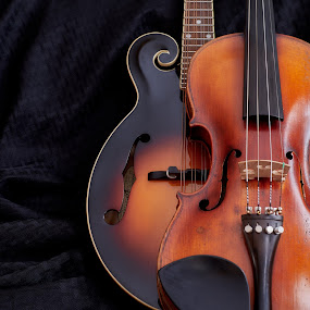 Mandofiddle by Svemir Brkic - Artistic Objects Musical Instruments ( violin, fiddle, dark, still life, mandolin )