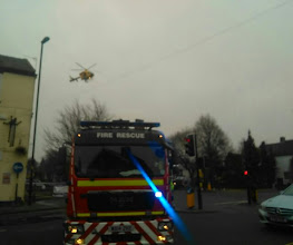 Photo: Coming in to land after a short half circle to assay the area. Not the first time on this junction.