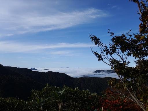 南側の展望(雲海)