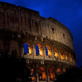Coliseo by Renata Apanaviciene - Buildings & Architecture Public & Historical ( night light, details, rome, architecture, historic,  )