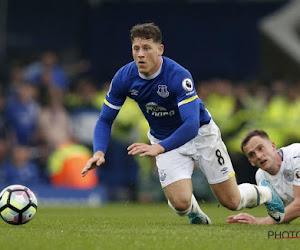 "Everton bant krant The Sun van club en stadion na ""degoutante column"""
