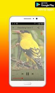 Master Burung Kepodang Emas Offline - náhled