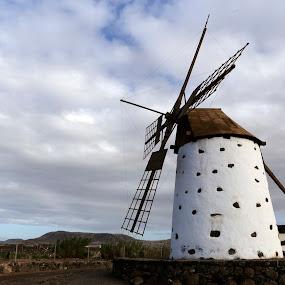 windmill by Alessandra Antonini - Uncategorized All Uncategorized ( old, power, cloudy, landscape, windmill,  )