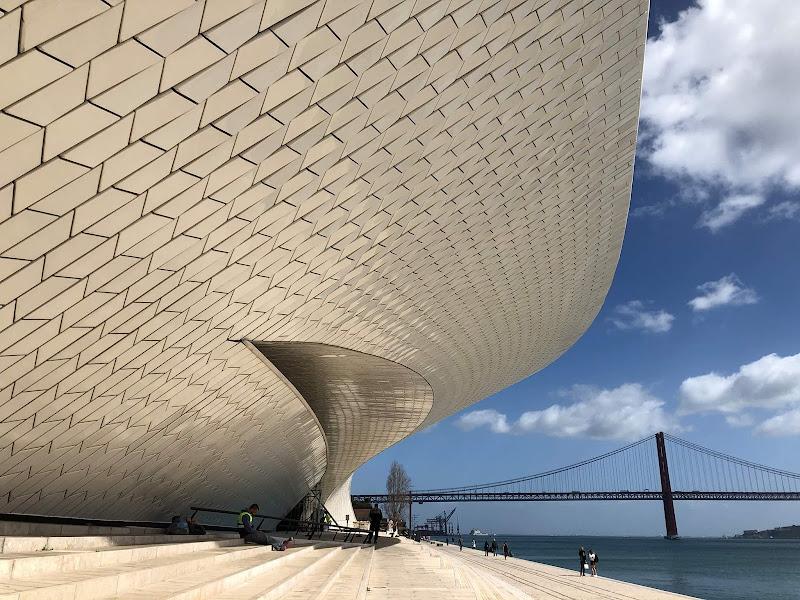 In bocca alla balena! di Alicante