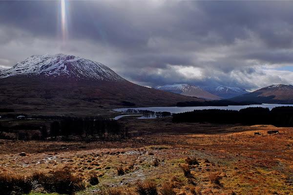 Highlands di amicocharlie