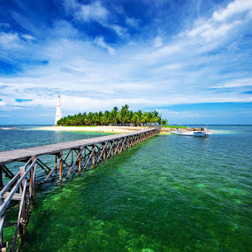 Wet Rice Island by Taufiqurakhman Ab - Landscapes Travel