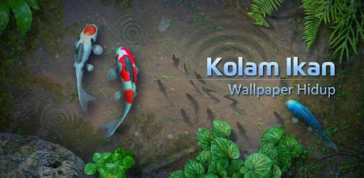 Wallpaper Hidup Kolam Ikan Koi  Aplikasi di Google Play