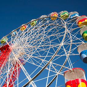 Ferris Wheel by Andrew Robinson - City,  Street & Park  Amusement Parks ( luna, ferris, sydney, luna park, ferris wheel )