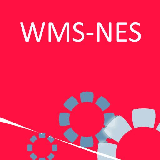 WMS Nes
