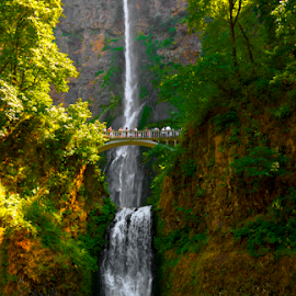 COLUMBIA RIVER GORGE MULTNOMAH FALLS by Gerry Slabaugh - Landscapes Waterscapes (  )