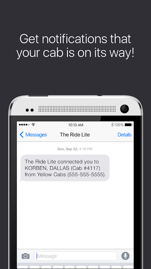 The Ride Lite- screenshot