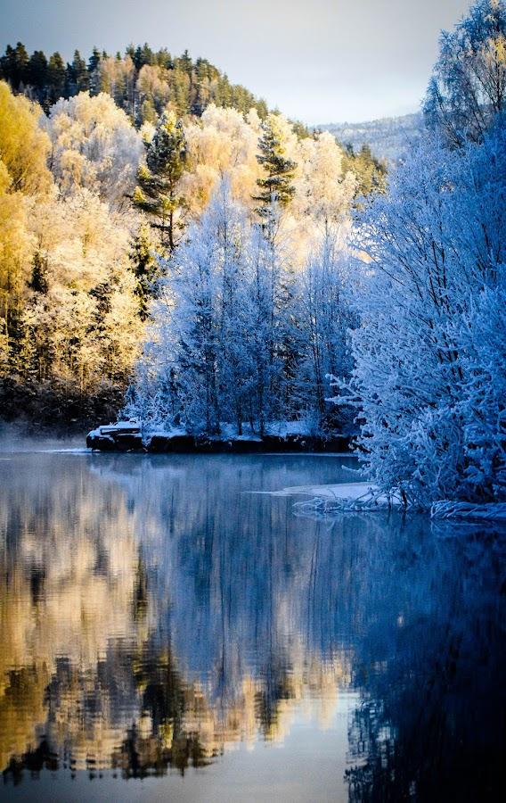 Frosty reflection by Erik Bjørnflaten - Landscapes Waterscapes