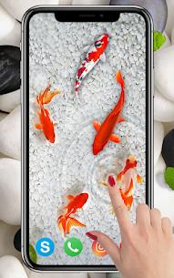 KOI Fish Live Wallpaper : New fish Wallpaper 2020 2