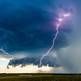 Prairie Light by Drew May - Landscapes Prairies, Meadows & Fields ( clouds, lightning, drewmayphoto, canada, alberta, grass, drew may photography, landscape, storm, prairie, fields )