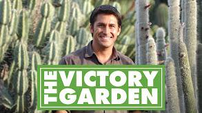 The Victory Garden thumbnail