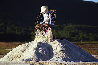 Photo: Woman collecting salt