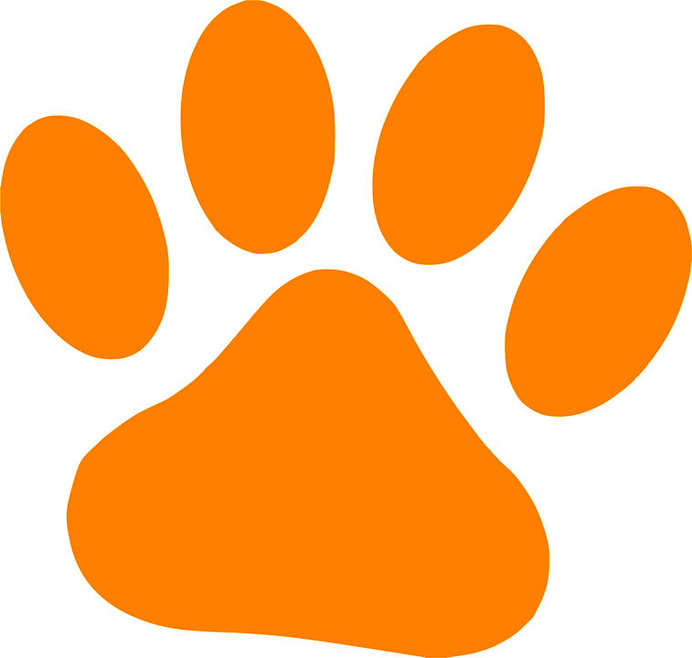 Paw - Free vector graphics on Pixabay