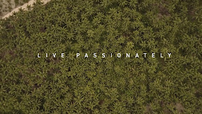 Live Passionately: The Story of Monsta Surf thumbnail