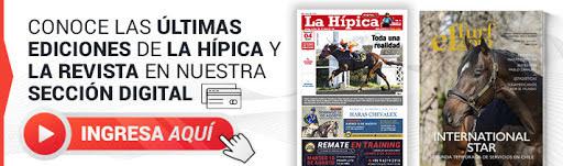 banner diario la hipica