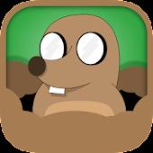 Mole Rescue: Save the moles