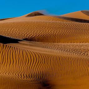 Dune Textures by Johan Jooste Snr - Landscapes Deserts ( sand, namib desert, dunes, sand-patterns, textures, johan jooste, light and shadow, namibia )