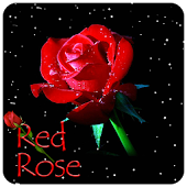 Red Rose Star Sky Theme
