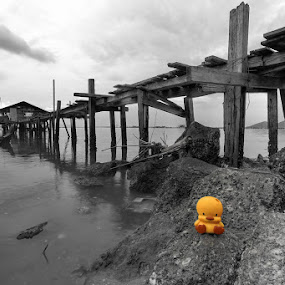 Homeless Rubber Ducky by Danny Tan - Landscapes Travel
