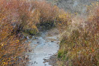 Photo: Creek at the end of Button Willow Drive