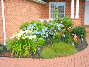 Photo: Miriam's Garden