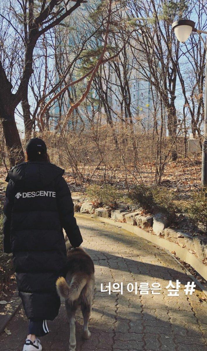 jeonyeon seungyeon animal shelter 3