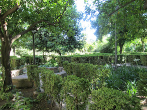 Photo: The garden of the Alcázar was extremely green and well-maintained.