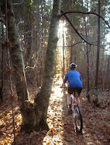 Hollybank Mountain Bike Facility - Trail Master Plan Released