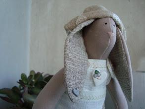 Photo: coniglietta tilda piccola, dettaglio