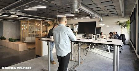 Nieuwe kantoren Wieni