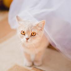 Wedding photographer Diana Kotova (Kotovaphotoru). Photo of 25.04.2016
