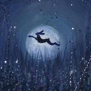 Сон заяц