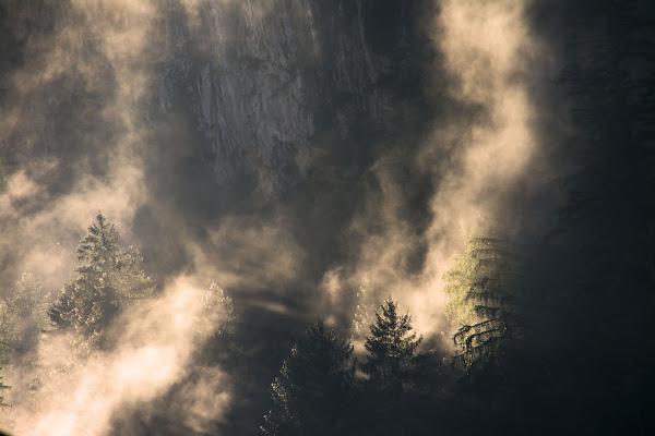 Luce del mattino di vaiolet