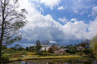 Photo: 藤岡