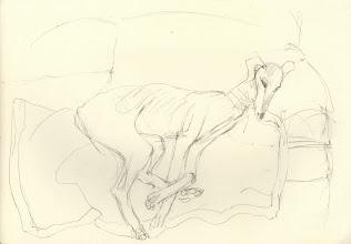 "Photo: Sketch of a Saluki, 21cm x 29cm, 8"" x 11.5"", 2012, graphite, Moleskine folio Sketchbook A4."