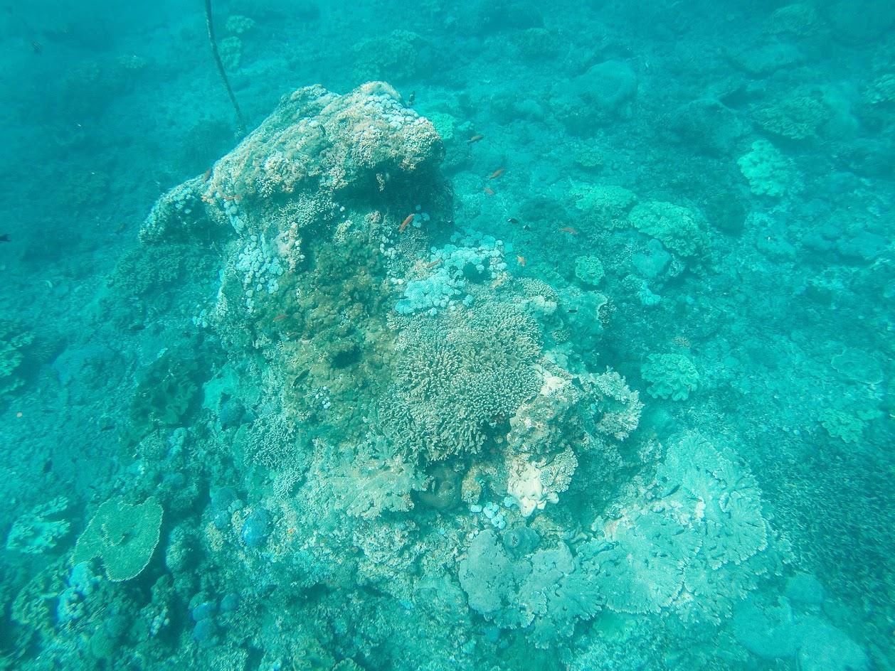 DIA 46 –De viagem entre as ilhas Nusa | Volta ao Mundo