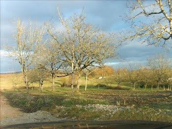 terrain à Beauregard-de-Terrasson (24)