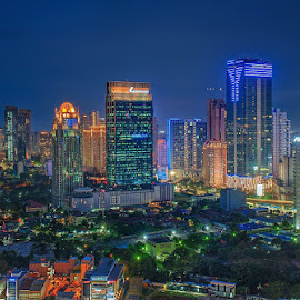 Blue City by Miko Adji - City,  Street & Park  Night ( lights, blue sky, park, blue hour, buildings, trees, tilt shift,  )