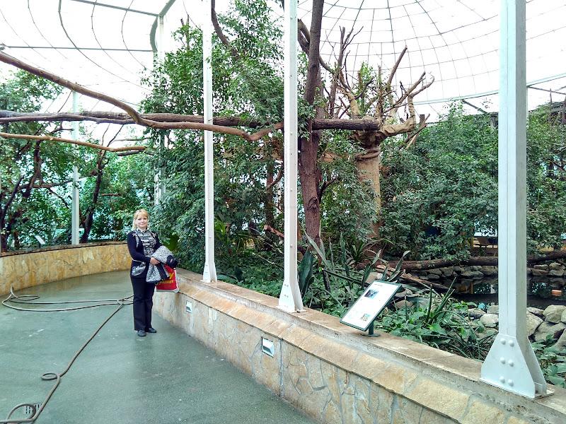Путешествия: Три столицы Будапешт, Вена, Прага глазами туриста. Будапешт – день третий (часть 3)
