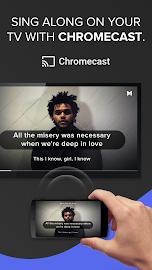 Musixmatch -  Lyrics & Music Screenshot 5