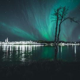 Prestvannet  by Vivian Ebeltoft - City,  Street & Park  City Parks ( aurora borealis, reflection, city, north, norway, aurora, lake, park )