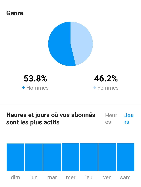statistique Instagram sur le genre et les heures et jours d'activités de vos abonnés