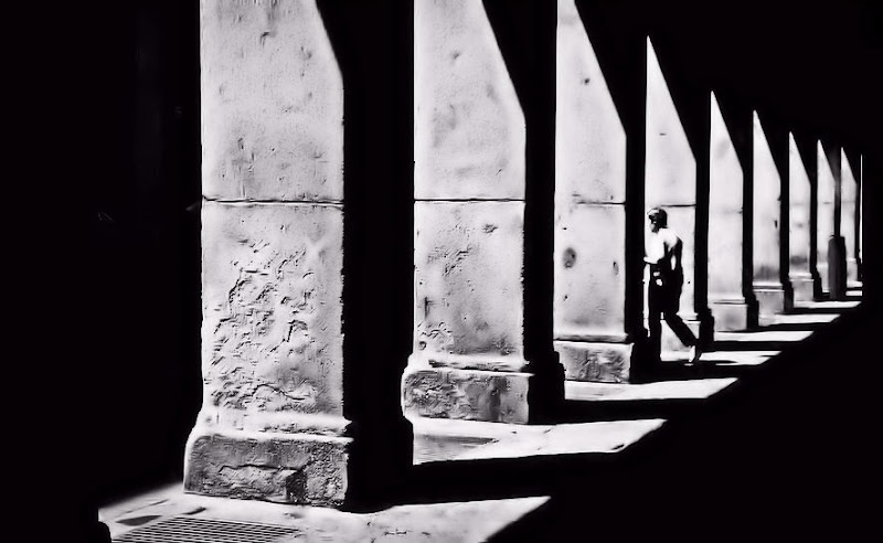 Elogio dell'ombra di francesco_abate