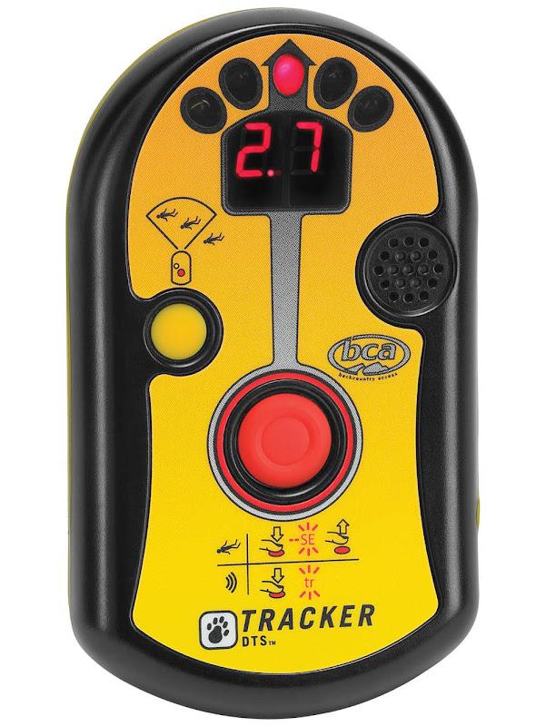BCA Tracker Dts Lawinepieper
