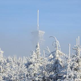 Klínovec v zimě by Věra Tudy - Landscapes Weather